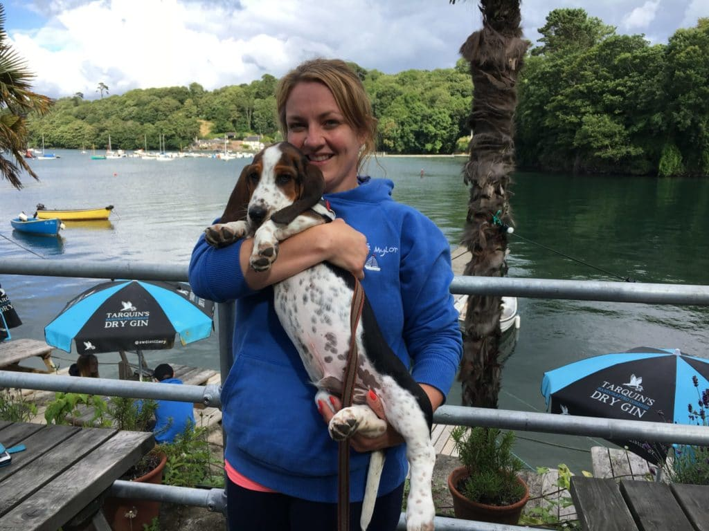 Bingley the Basset at The Shipwright's Arms in Helford, Cornwall