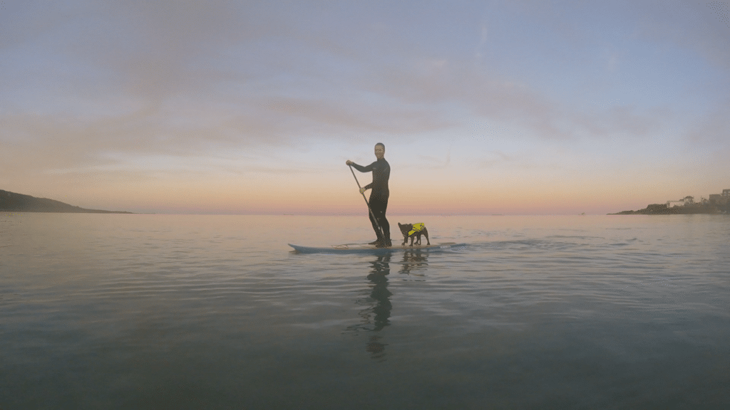 SUP with yoru dog, Coverack, Cornwall