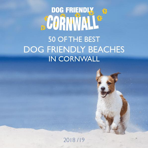 Dog Friendly Cornwall beach guide 2018