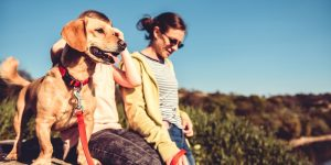 Dog Friendly Cornwall - Get Discovered
