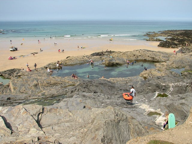 Is Constantine Bay Dog Friendly