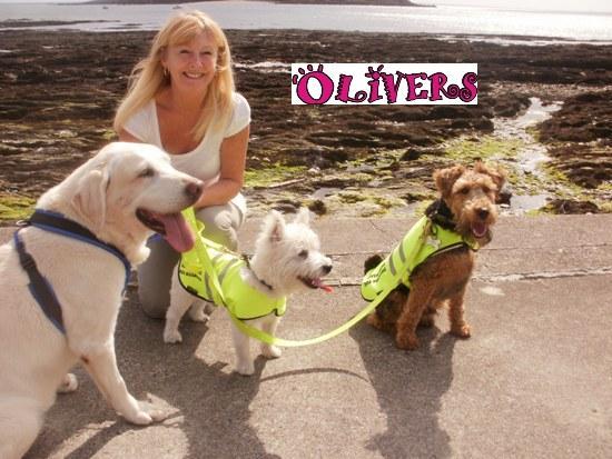 Dog Friendly Beaches Cornwall Council