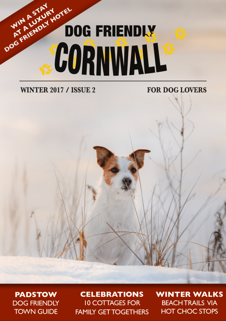 Subscribe to Dog Friendly Cornwall magazine in 2018