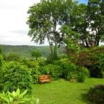 Tamar Orchard Barn garden