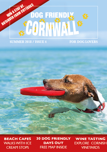 Dog Friendly Cornwall magazine summer 2018