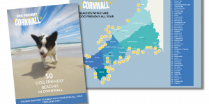 Dog Friendly Cornwall Beach Guide and Map
