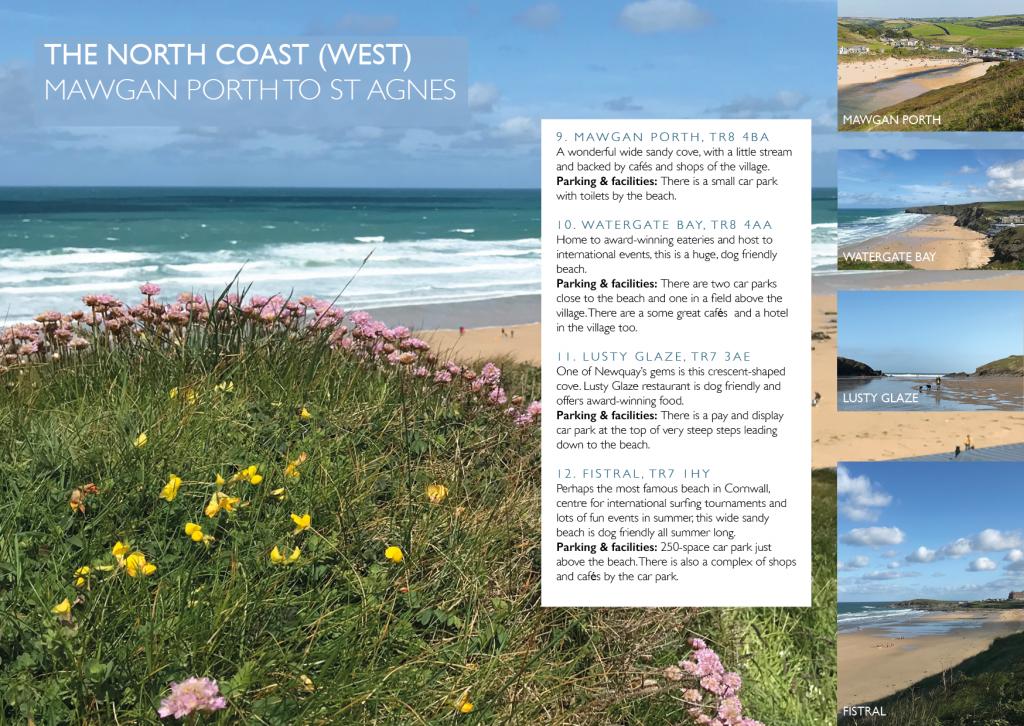 Dog Friendly Cornwall beach guide