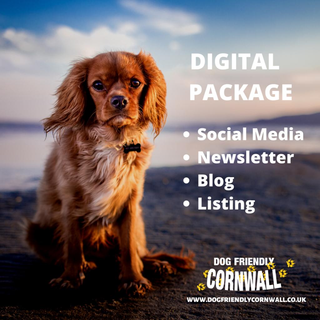 Digital advertising package