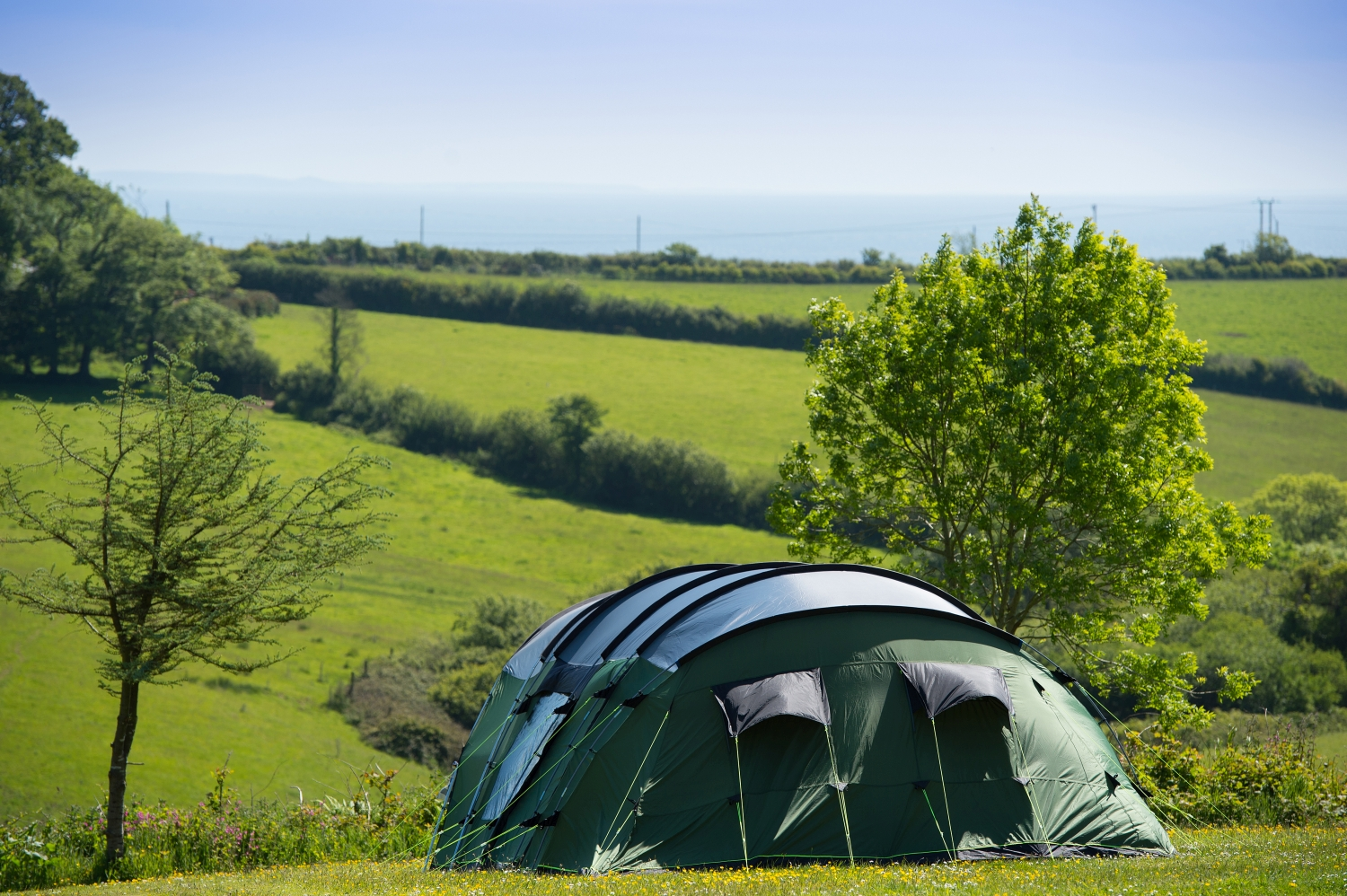 Heligan Caravan And Camping Park Dog Friendly Cornwall